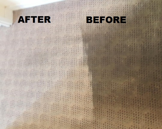 top carpet cleaning compan in toronto